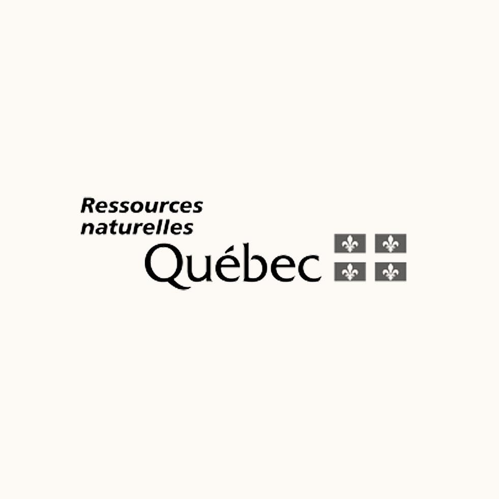 Ministère des ressources naturelles (MRN)